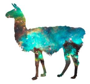 dods_llama