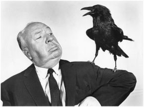 photographe-anonyme-hitchcock-the-birds-1963